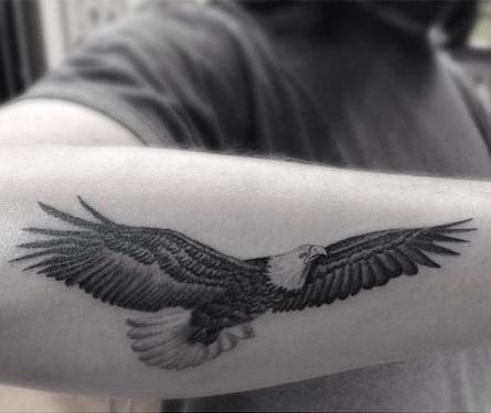 Single Needle Eagle Tattoo