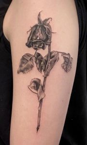 Dead Rose Tattoo