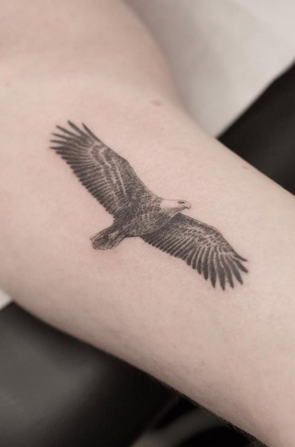 Flying Eagle Tattoo