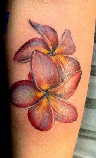 Plumeria Tattoos Tattoo Styles Meanings More