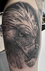Philippine Eagle Tattoo