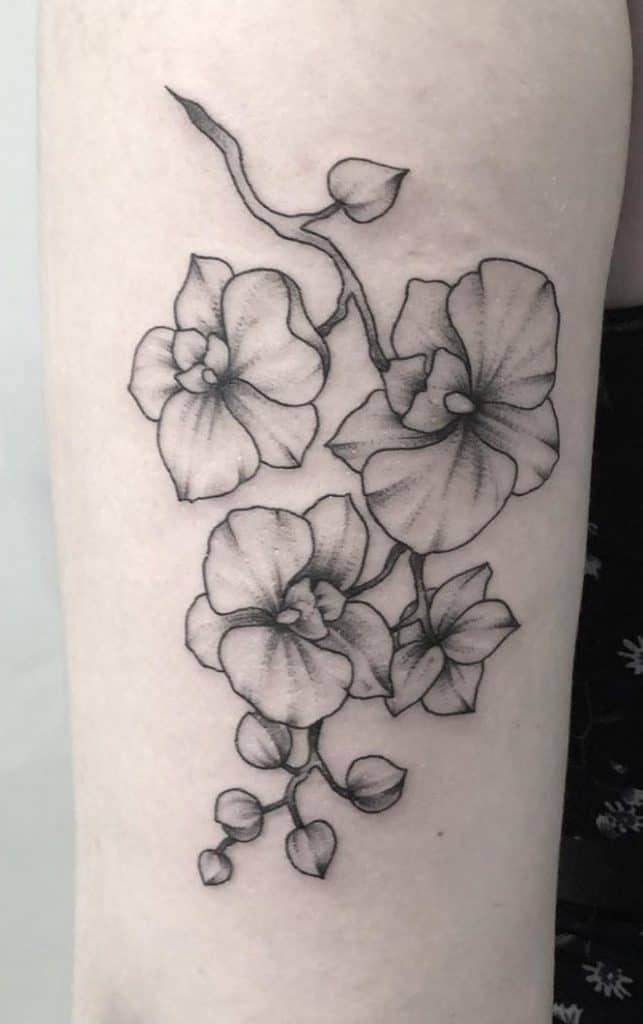Simple Orchid Tattoo