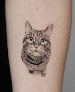 Single Needle Cat Tattoo