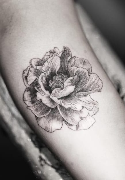 Single Needle Peony Tattoo