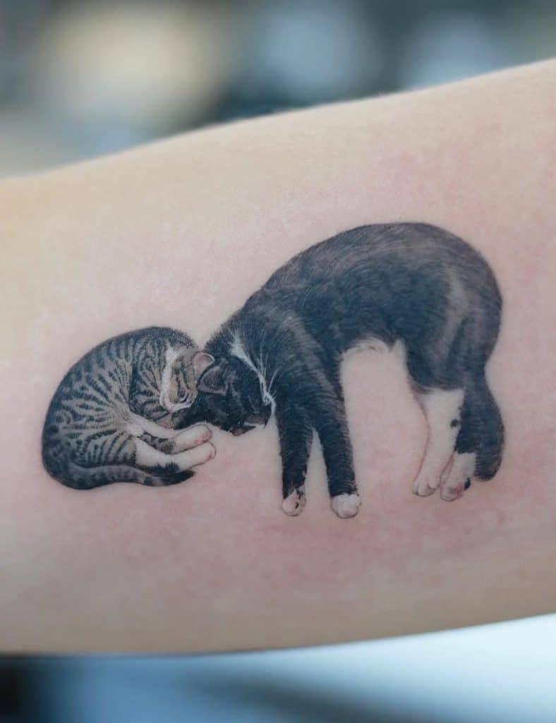Sleeping Cat Tattoo