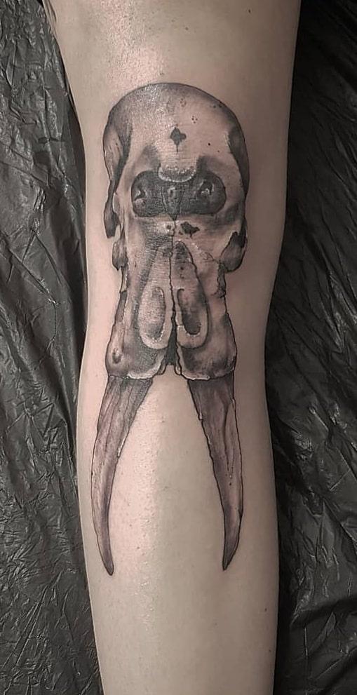 Elephant Skull Tattoo