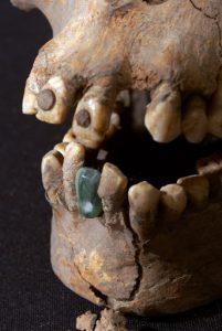 Jade Tooth