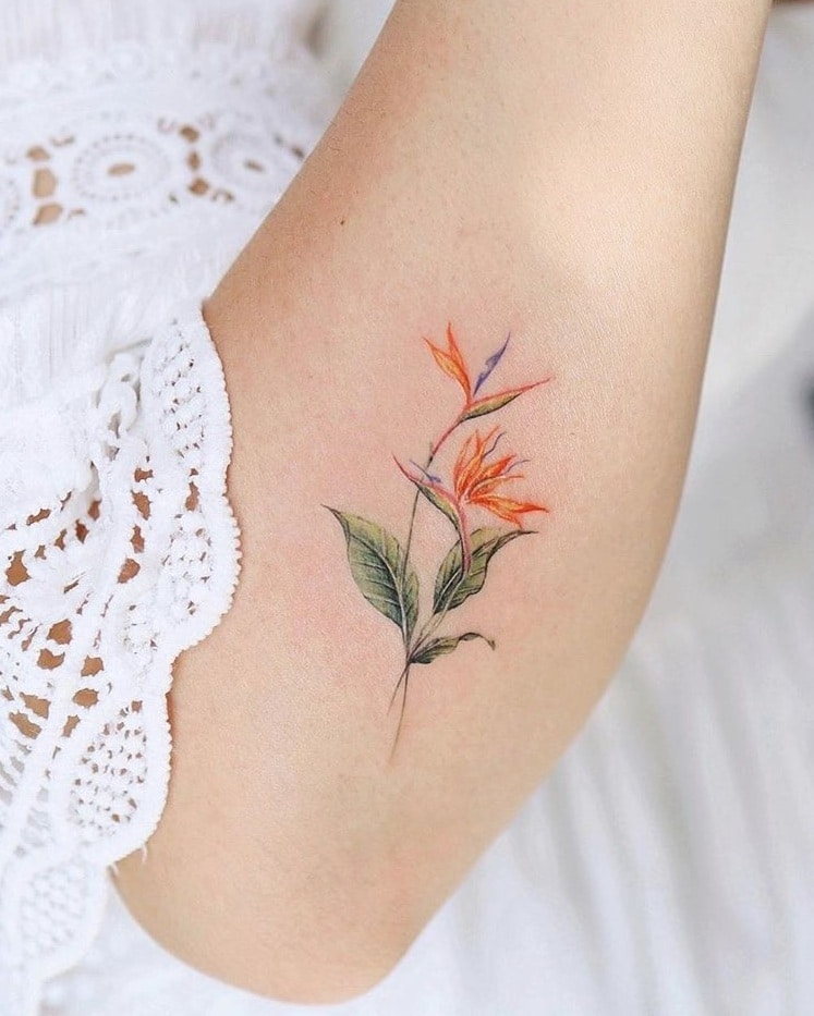Bird of Paradise Tattoo