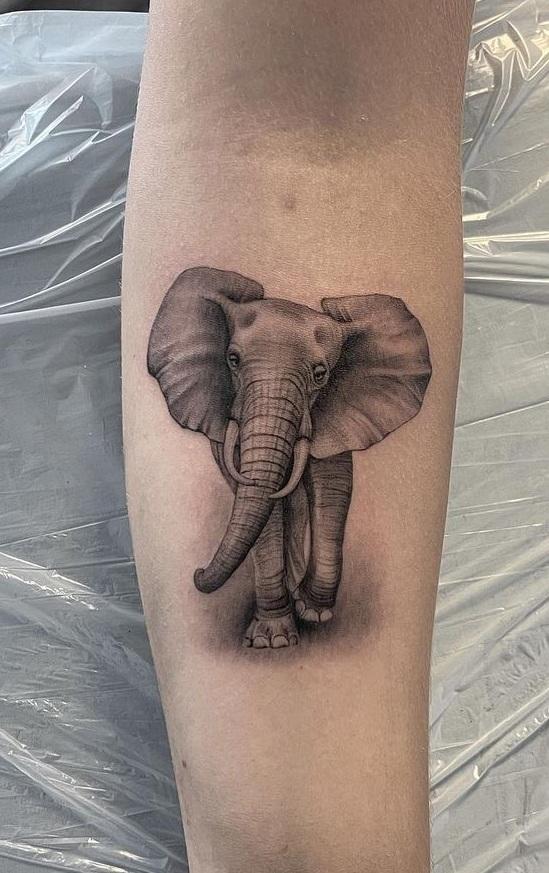 Elephant Forearm Tattoo